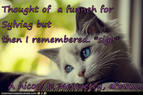 Thought of  a funneh for                                                       Sylviag but                                                  then I remembered. *sigh*   A hicoo. Iz meowetry, afinkso.
