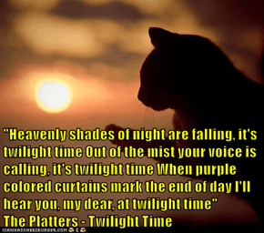 """""""Heavenly shades of night are falling, it's twilight time Out of the mist your voice is calling, it's twilight time When purple colored curtains mark the end of day I'll hear you, my dear, at twilight time""""             The Platters - Twilight Time"""