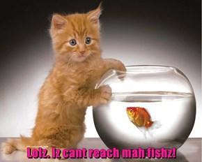 Lolz. Iz cant reach mah fishz!