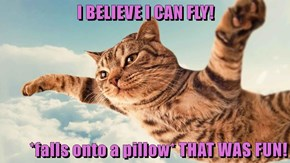 I BELIEVE I CAN FLY!  *falls onto a pillow* THAT WAS FUN!