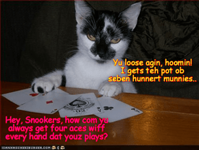 Using som secret strategies dat hims best frend Krafty tawt him, Snookers wer able to win fibe thowsand munnies to help in teh serch for sweet littl Mischeff!