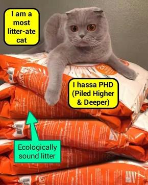 """A most litter-ate cat"" (recaption: http://tinyurl.com/hho9exq"