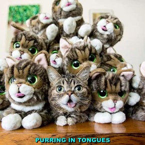 PURRING IN TONGUES