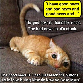 """I have good news and bad news"" (recaption: http://tinyurl.com/zdnczym"