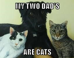 MY TWO DAD'S  ARE CATS