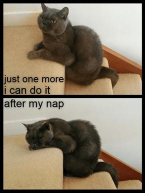 And then I'll sleep on it