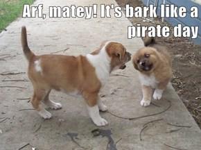 Arf, matey! It's bark like a pirate day