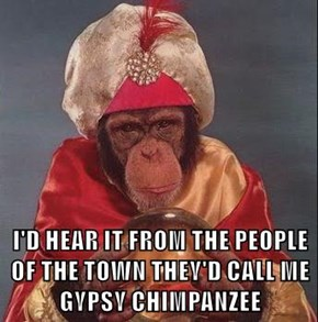 I'D HEAR IT FROM THE PEOPLE OF THE TOWN THEY'D CALL ME GYPSY CHIMPANZEE