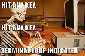 HIT ANY KEY. HIT ANY KEY. TERMINAL LOOP INDICATED.