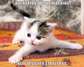 AUTHORITIES ISSUE WARNING  NEW DESIGNER STREET RUG