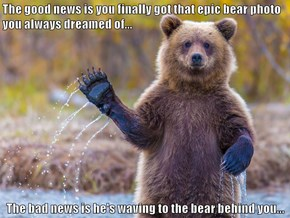The good news is you finally got that epic bear photo you always dreamed of...  The bad news is he's waving to the bear behind you...