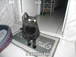 MAT  A GATEWAY RUG