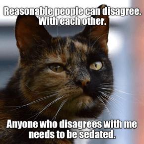 Reasonable cat is reasonably reasonable.