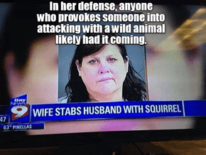 But what about that poor squirrel?