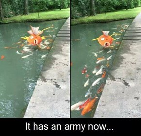 When Magikarp Brings Reinforcements