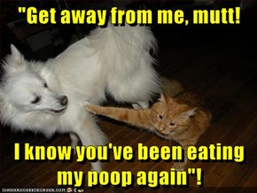 """""""Get away from me, mutt!  I know you've been eating my poop again""""!"""