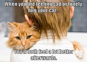When you are feeling sad or lonely, hug your cat...  You'll both feel a lot better afterwards.