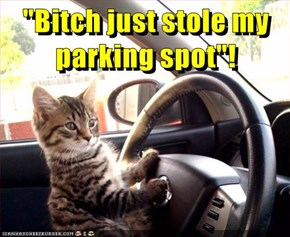 """Bitch just stole my parking spot""!"