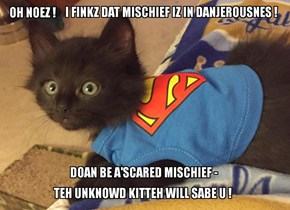 Who will help Mischief escape teh vishush creature? Dis iz job 4 teh unknowd kitteh!