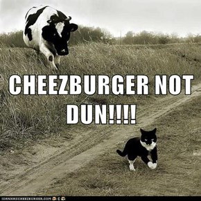 CHEEZBURGER NOT DUN!!!!