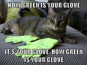 HOW GREEN IS YOUR GLOVE  IT'S YOUR GLOVE, HOW GREEN IS YOUR GLOVE