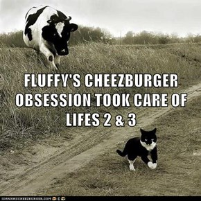 FLUFFY'S CHEEZBURGER OBSESSION TOOK CARE OF LIFES 2 & 3