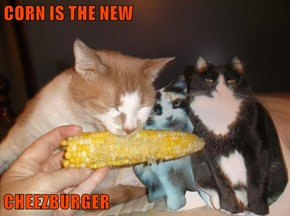 CORN IS THE NEW  CHEEZBURGER