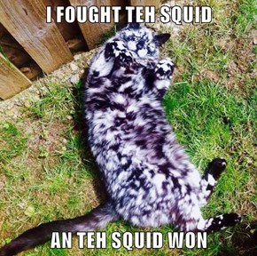 I FOUGHT TEH SQUID  AN TEH SQUID WON