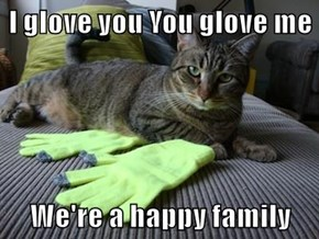 I glove you You glove me  We're a happy family