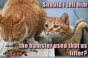 Should I tell him  the hamster used that as litter?