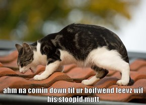 ahm na comin down til ur boifwend leevz wif his stoopid mutt