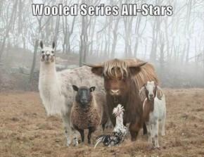 Wooled Series All-Stars