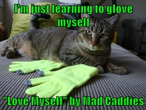"I'm just learning to glove myself  ""Love Myself"" by Mad Caddies"