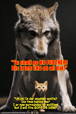 As brave little Mischeff fases a vishush wolf in front ob her, suddenly der is an even bigger and stronger and mor vishush wolf behind her! Shurly dis is teh end ob Mischeff!!