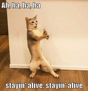 Ah, ha, ha, ha  stayin' alive, stayin' alive