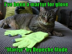 "I've been a martyr for glove  ""Martyr"" by Depeche Mode"