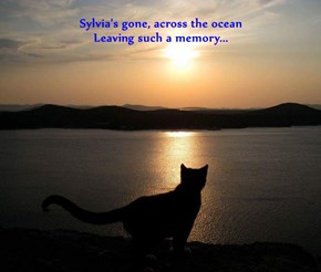 Sylvia's gone, across the ocean                                                                                         Leaving such a memory...