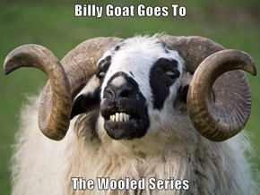 Billy Goat Goes To  The Wooled Series