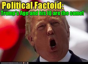 Political Factoid