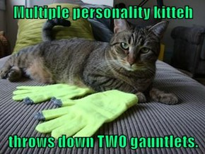 Multiple personality kitteh  throws down TWO gauntlets.