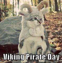 Viking Pirate Day