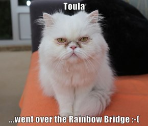 Toula  ...went over the Rainbow Bridge :-(