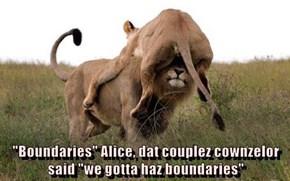 """Boundaries"" Alice, dat couplez cownzelor said ""we gotta haz boundaries"""