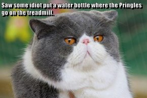 Saw some idiot put a water bottle where the Pringles go on the treadmill.
