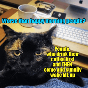 Worse Than Happy Morning People?
