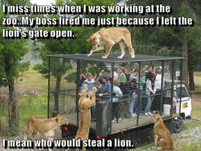 I miss times when I was working at the zoo..My boss fired me just because I left the lion's gate open. . I mean who would steal a lion.