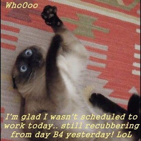 WhoOoo  I'm glad I wasn't scheduled to work today.. still recubbering from day B4 yesterday! LoL
