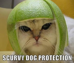 SCURVY DOG PROTECTION
