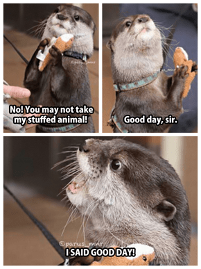 Never Try to Take an Otter's Stuffed Animal