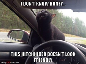 I DON'T KNOW HONEY...  THIS HITCHHIKER DOESN'T LOOK FRIENDLY